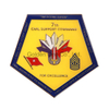 Custom Odd Shape Soft Enamel Epoxy Military Coin